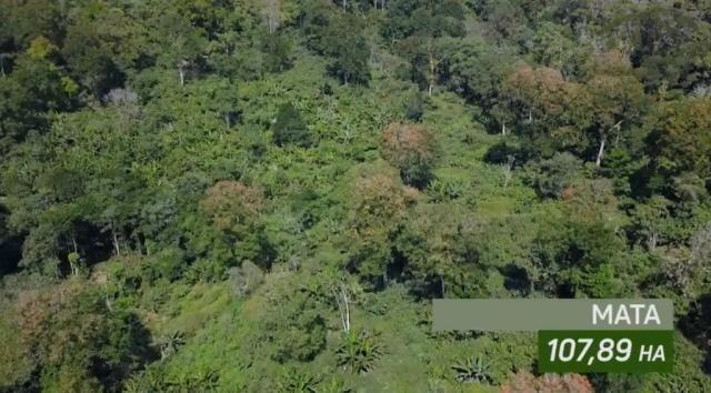 Fazenda de Cacau, Látex e Mogno no Brasil - Cidade Ituberá-BA - Foto 9