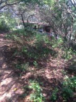 Granja-Chácara-Sítio 1,6 Hectares em Olinda, Aceito Automóvel ou imóvel - Foto 17
