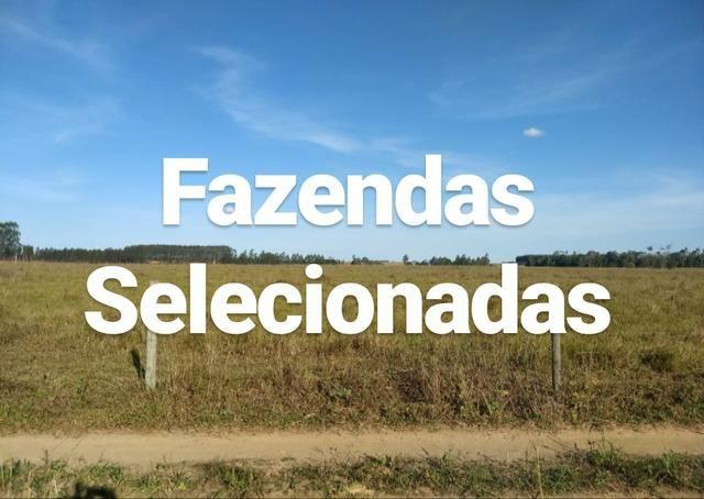 Vendo Fazendas