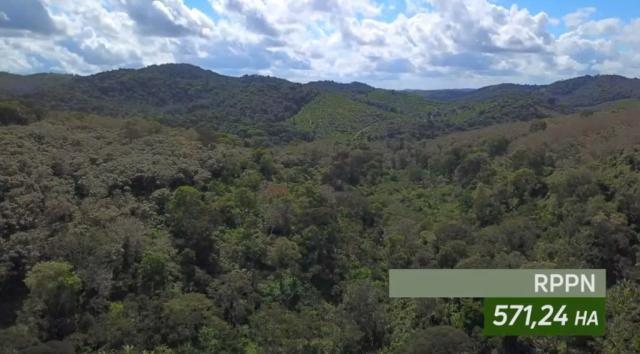 Fazenda de Cacau, Látex e Mogno no Brasil - Cidade Ituberá-BA - Foto 6