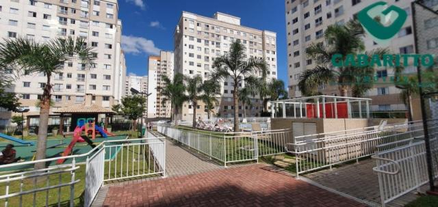 Apartamento para alugar com 3 dormitórios em Pinheirinho, Curitiba cod:00261.005 - Foto 19