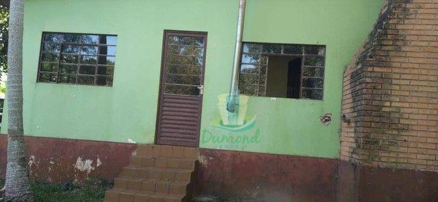 Chácara com 3 dormitórios à venda com 10000 m² por R$ 480.000 no Apepú em São Miguel do Ig - Foto 14