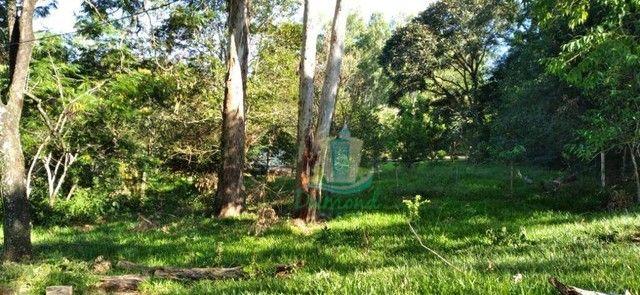 Chácara com 3 dormitórios à venda com 10000 m² por R$ 480.000 no Apepú em São Miguel do Ig - Foto 6