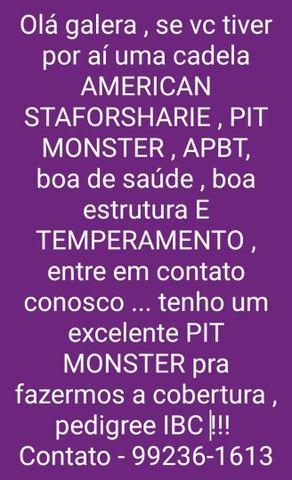 PIT MONSTER PARA COBERTURA...