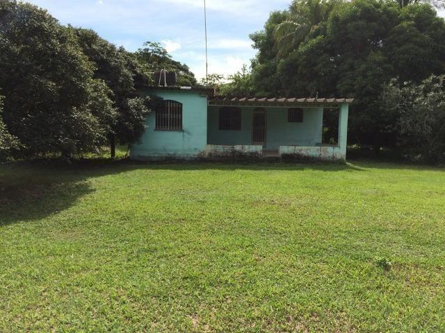 Excelente Sítio - Com 2 Casas - Piscina 16 300 m² - Foto 4