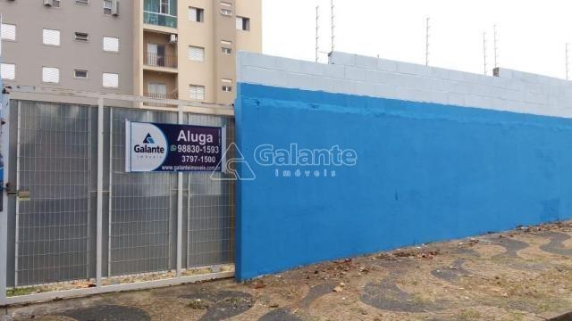 Terreno para alugar com 0 dormitórios em Cambuí, Campinas cod:TE050177