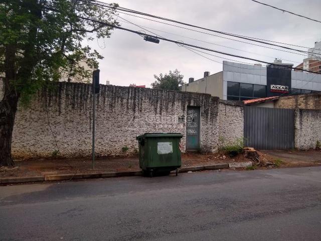 Terreno para alugar com 0 dormitórios em Cambuí, Campinas cod:TE049120