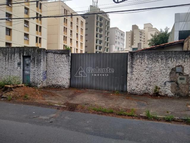 Terreno para alugar com 0 dormitórios em Cambuí, Campinas cod:TE049120 - Foto 2