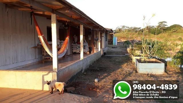 Chácara com 9 Represas no Asfalto em Alta Floresta - Foto 8