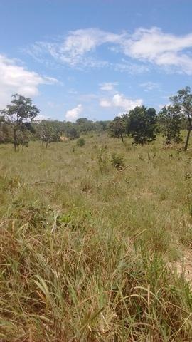 Oportunidades venda de fazenda de 14 alq em Uruaçu GO - Foto 4