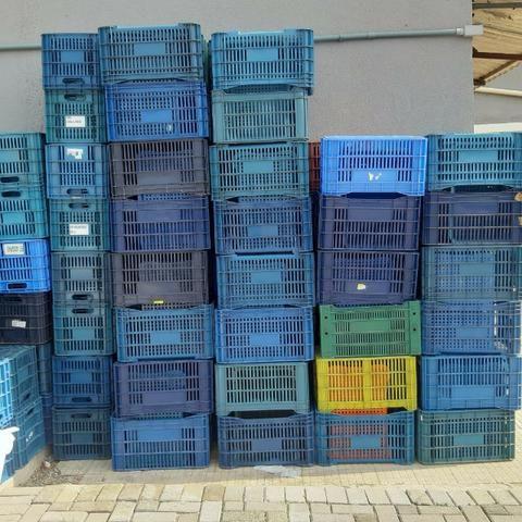 Caixa Agricola Organizadora - Foto 2