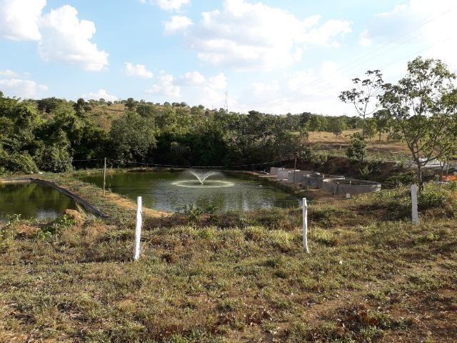 Fazenda à venda ou troca R$ 12 mil o Hectare- Zona Rural - Luziânia/GO - Foto 20