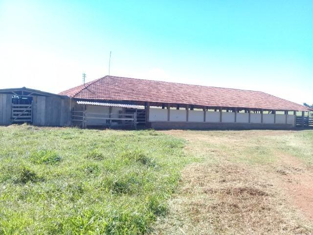 Fazenda para venda em Formosa-GO - Foto 13