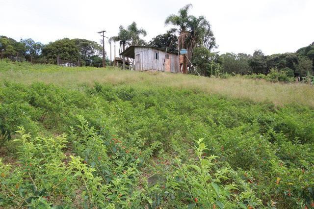 Chácara à venda na Colônia Murici - Foto 9