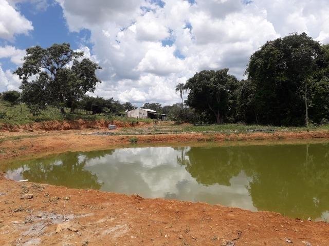 Fazenda à venda ou troca R$ 12 mil o Hectare- Zona Rural - Luziânia/GO - Foto 5