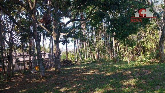 Galpão/depósito/armazém à venda em Sumaré, Caraguatatuba cod:AR0135 - Foto 9