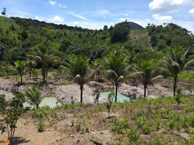 Sítio dos sonhos seu pedaço do Paraíso com 7 hectares por 150 mil - Foto 20