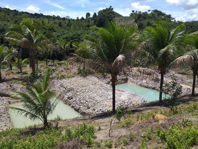 Sítio dos sonhos seu pedaço do Paraíso com 7 hectares por 150 mil - Foto 19