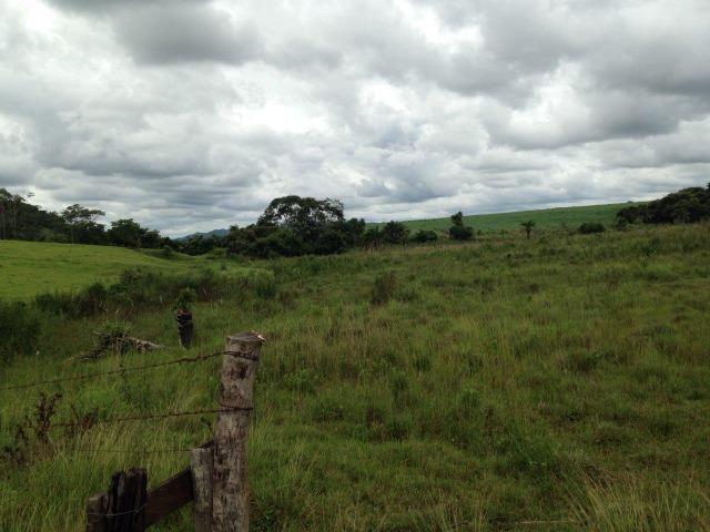 25 Alqueires-Avelinópolis Goiás-Próx. Goiânia-Excelente Preço R$ 150.000,00 o Alqueire - Foto 10