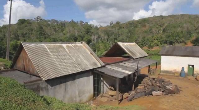 Fazenda de Cacau, Látex e Mogno no Brasil - Cidade Ituberá-BA - Foto 4