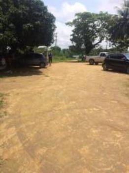 Granja-Chácara-Sítio 1,6 Hectares em Olinda, Aceito Automóvel ou imóvel - Foto 14