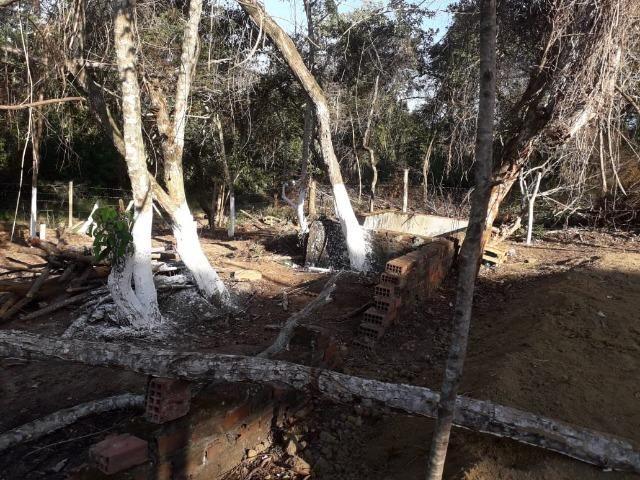 Terreno em Pindobal - Bambuí - Maricá - Foto 7