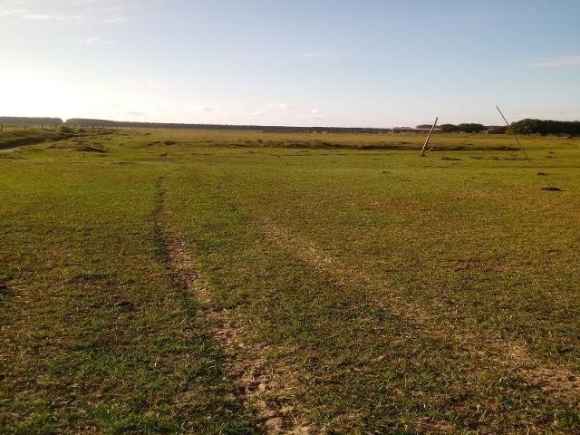Bela Fazenda - Foto 6