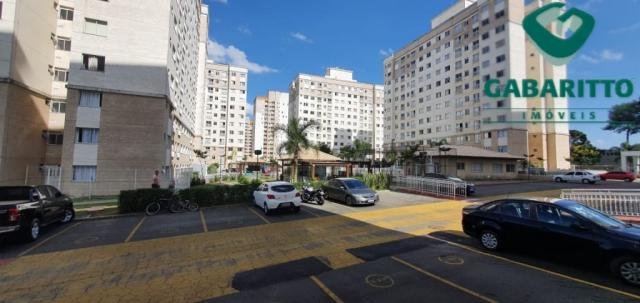 Apartamento para alugar com 3 dormitórios em Pinheirinho, Curitiba cod:00261.005 - Foto 20