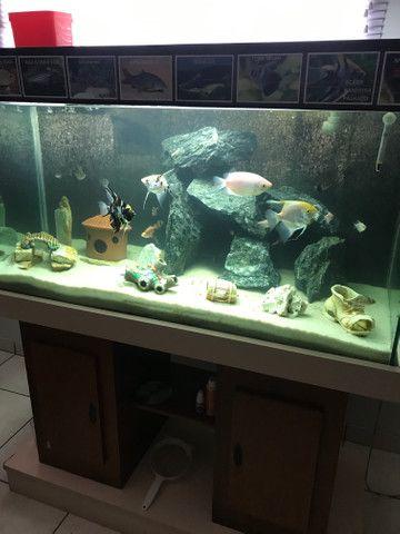 Aquario 400 litros completo - Foto 3