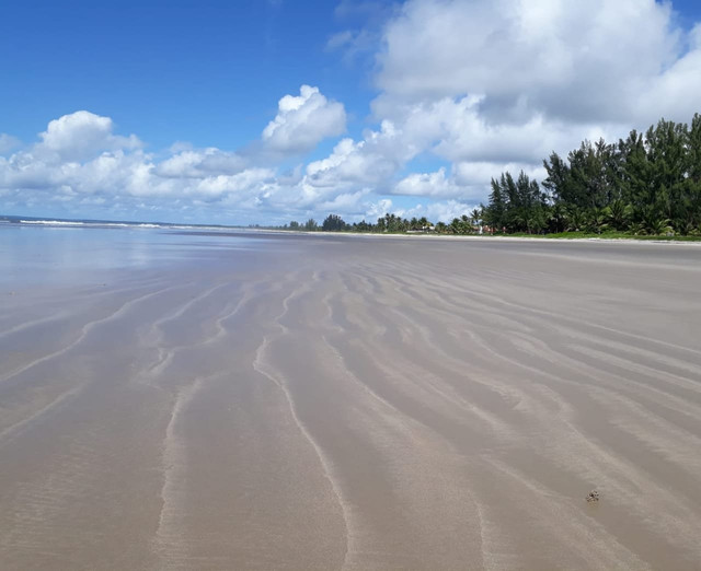 Praia do Guaibim - Foto 12