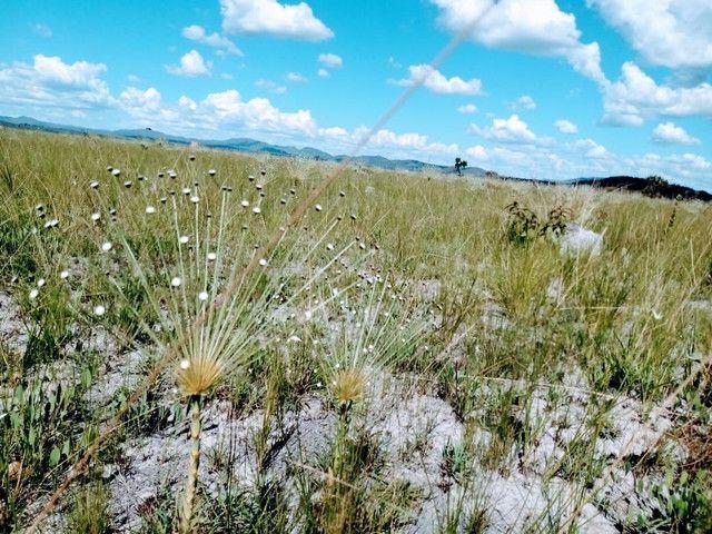 Oportunidade Única! Vendo terreno 1000mts Alto Paraíso Chapada dos Veadeiros - Foto 9