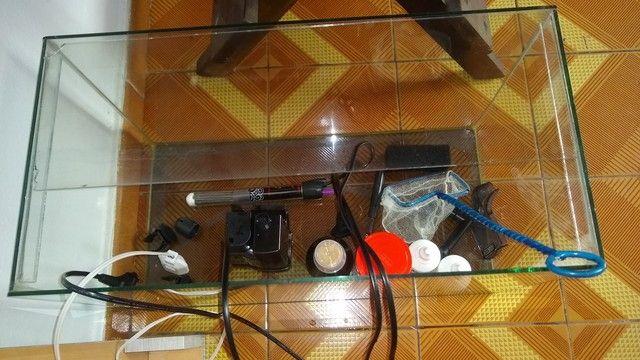 Aquário 50x25x30 37 litros com tampa de vidro e tampa em madeira com luminária
