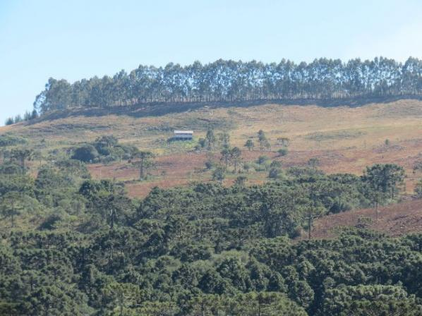 Linda fazenda em Urubici - Foto 13