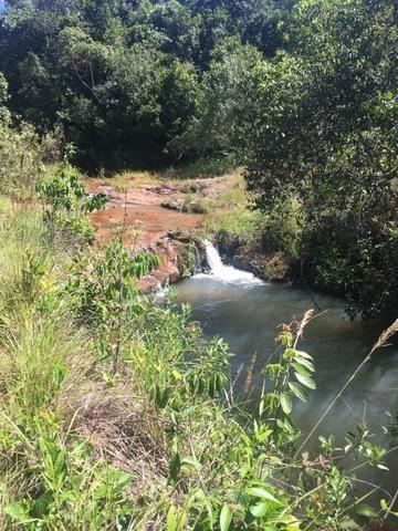 Fazenda em Frutal Minas Gerais Triângulo Mineiro - Foto 16