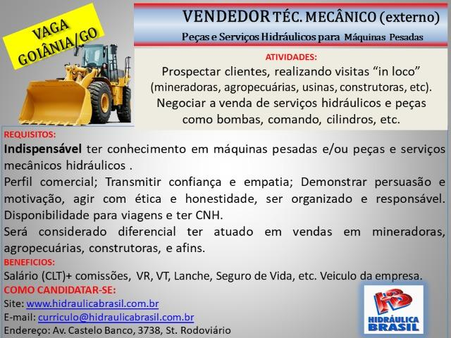 Vendedor Externo - Peças e serviços Hidráulicos-Goiânia