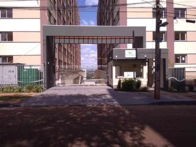 8078   apartamento à venda com 2 quartos em jd alvorada, maringá - Foto 4
