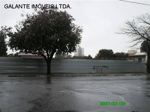 Terreno para alugar em Jardim das paineiras, Campinas cod:TE049861