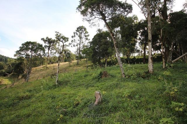 Chácara na Papanduvinha em SJP - Foto 17