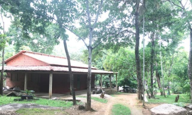 Alugo Chácara em Taquaruçu, Palmas - Tocantins - Foto 15