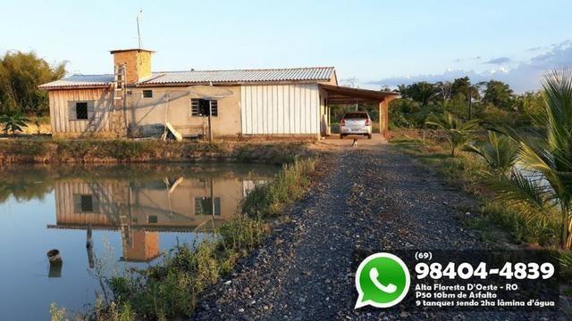 Chácara com 9 Represas no Asfalto em Alta Floresta - Foto 3