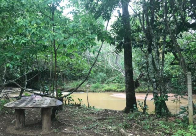 Alugo Chácara em Taquaruçu, Palmas - Tocantins - Foto 10