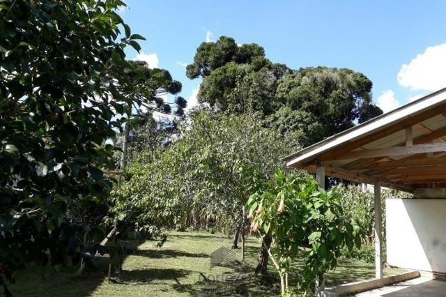 Chácara com 42.350,00m² em Agudos do Sul - Foto 3