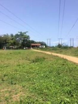 Granja-Chácara-Sítio 1,6 Hectares em Olinda, Aceito Automóvel ou imóvel - Foto 3