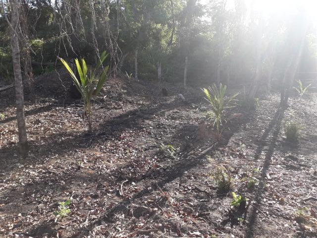 Terreno em Pindobal - Bambuí - Maricá - Foto 9