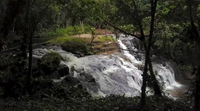 Fazenda de Cacau, Látex e Mogno no Brasil - Cidade Ituberá-BA - Foto 11