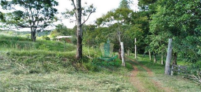 Chácara com 3 dormitórios à venda com 10000 m² por R$ 480.000 no Apepú em São Miguel do Ig - Foto 3