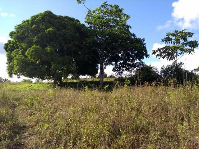 Sitio Próximo à Aracaju - Foto 8