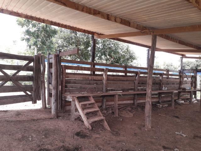 Fazenda à venda ou troca R$ 12 mil o Hectare- Zona Rural - Luziânia/GO - Foto 10