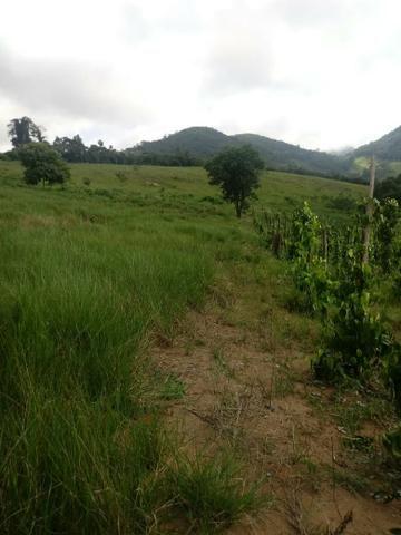 Sitio em monte alto - itaipe - Foto 3