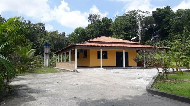Localidade de Santa Rita , Bela Vista do Gurupi Maranhão. - Foto 4